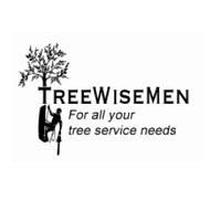 Treewisemen